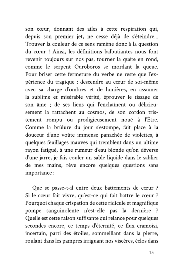 Autour De L'Ecriture Imaginale (page 13)